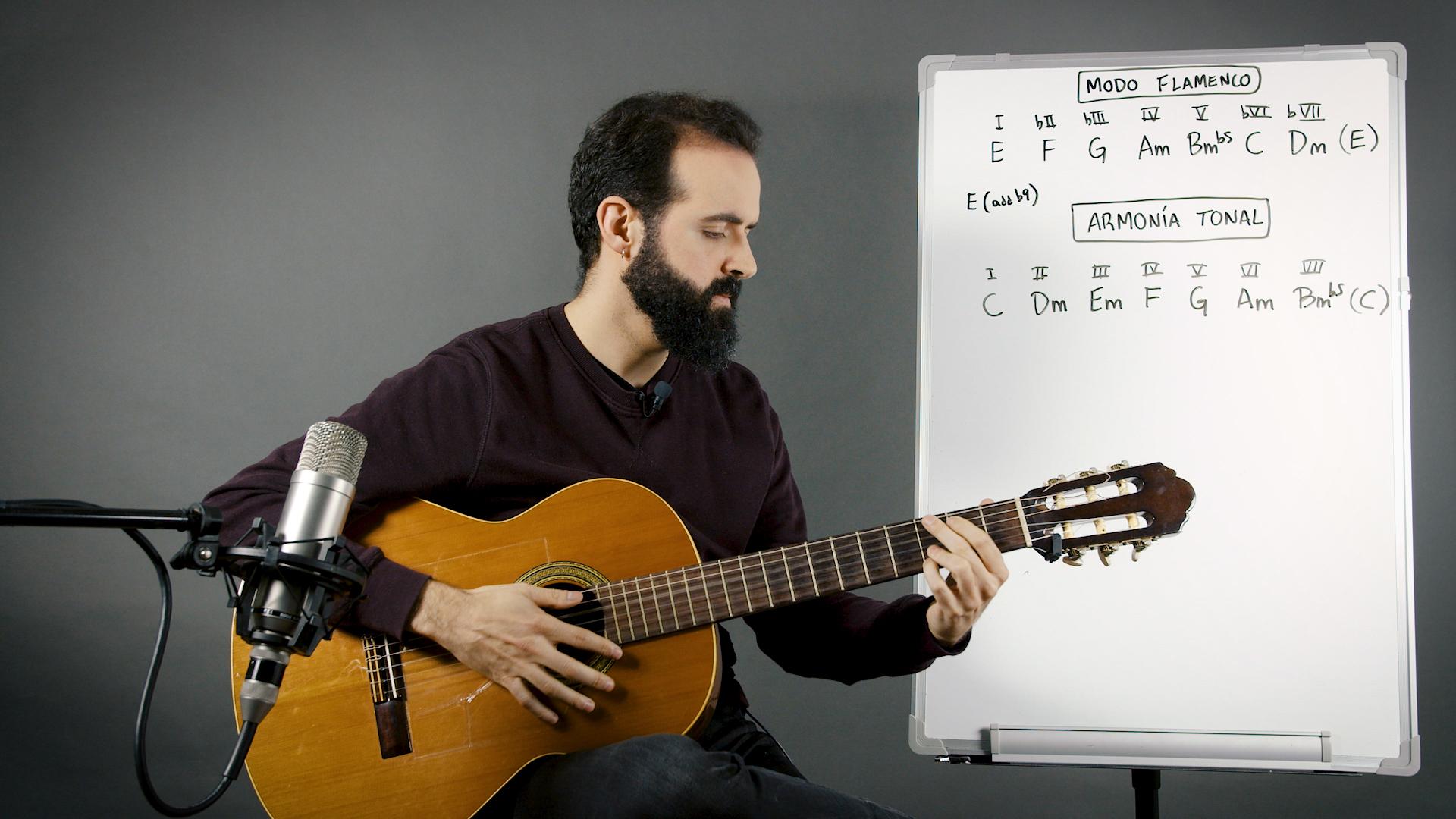 La armonía en el flamenco