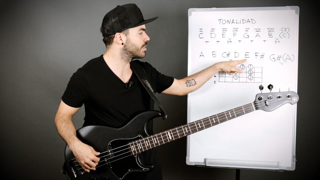 Armonía musical para bajistas - La tonalidad: cómo se forma
